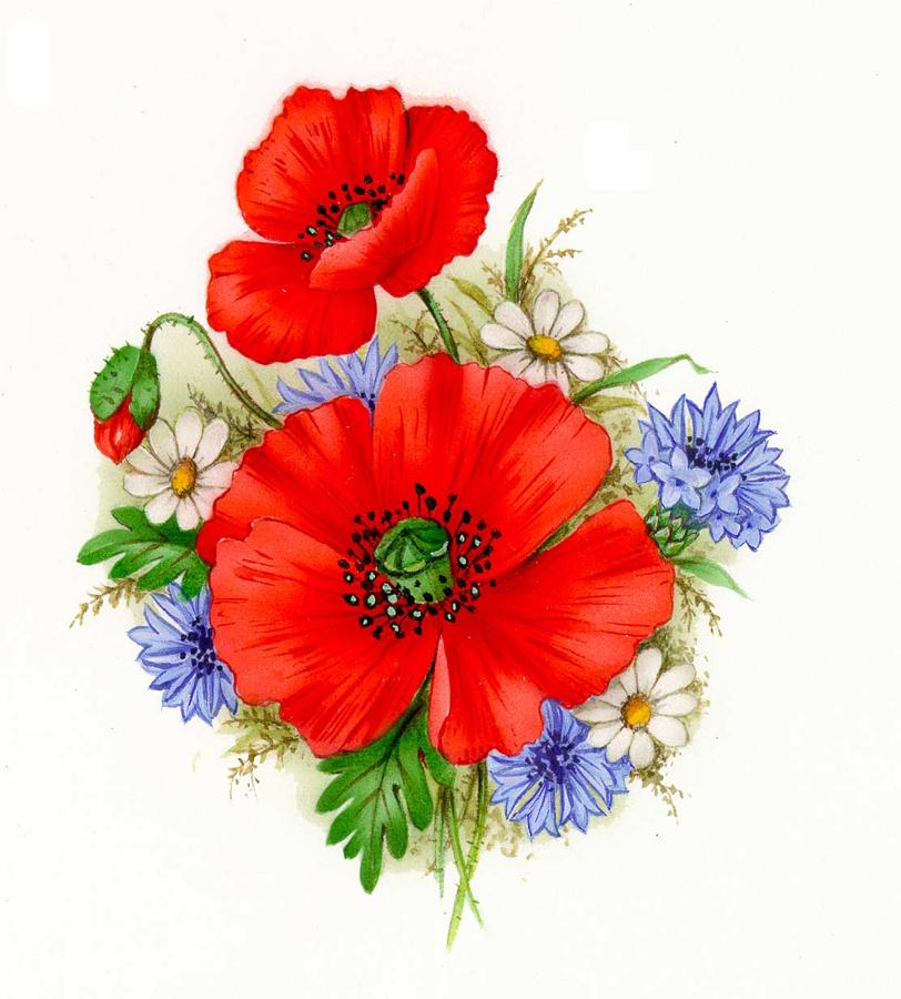 Poppy flowers tattoo design mightylinksfo