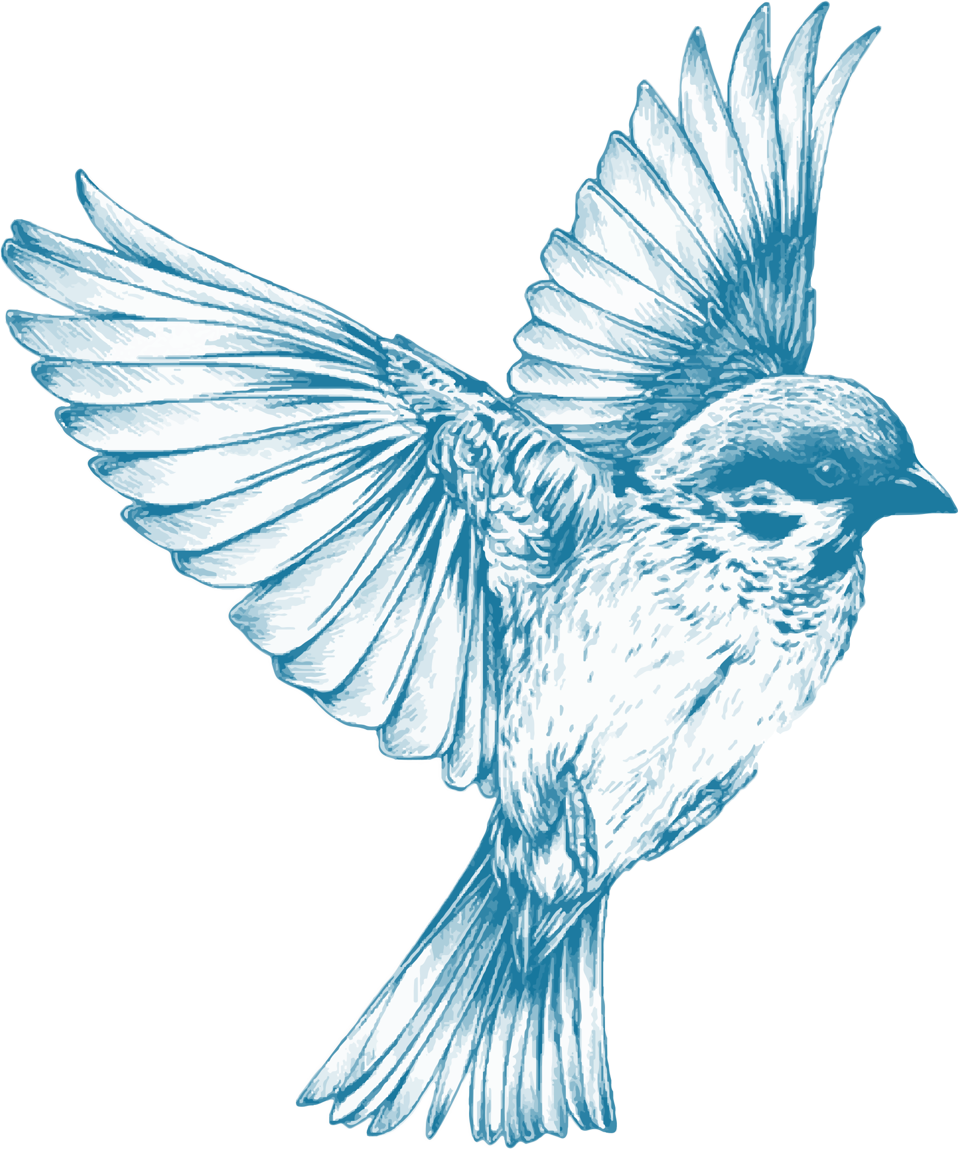 Elegant Hummingbird Tattoo Design Photo 1