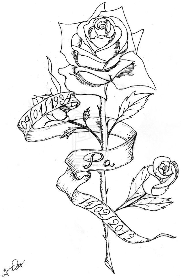 Rose And Ribbon Tattoos Drawing Photo 1 All Tattoos For Men