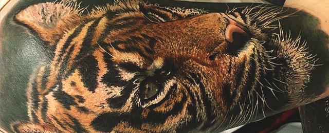 Tiger Tattoo Designs For Men