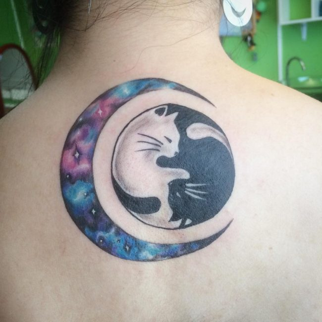 Black-And-White-Cats-With-Watercolor-Moon-Tattoo-On-Girl-Upper-Back