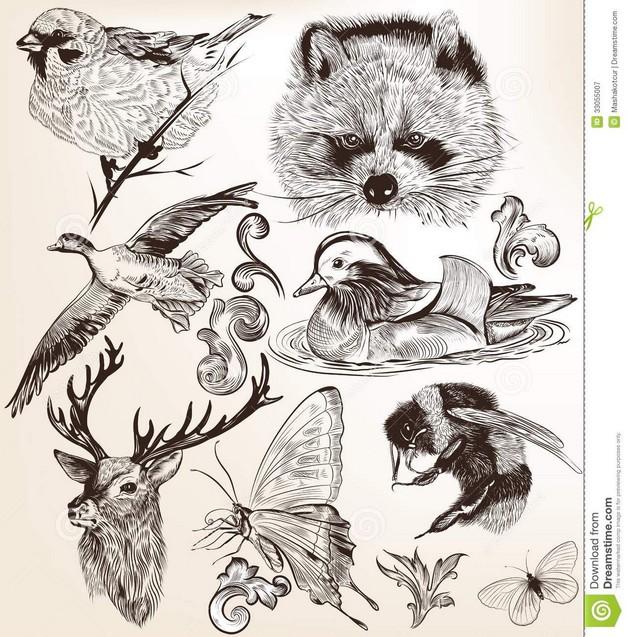 3 Hummingbirds Tattoo Design photo - 1