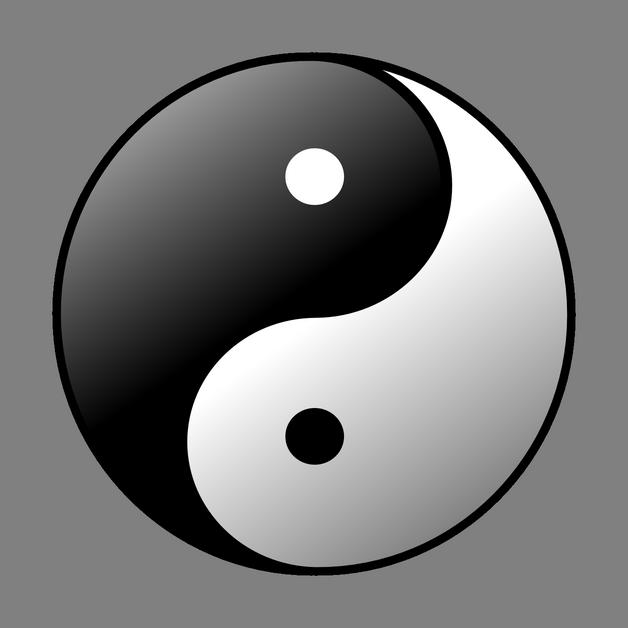 Amazing Yin Yang Tattoo On Arm photo - 1