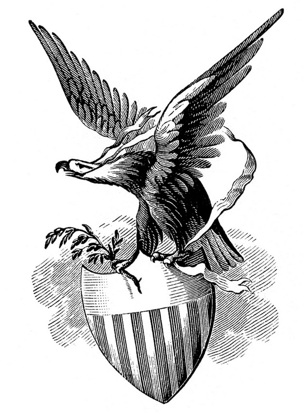 Angry American Eagle with Flag - Eagle Tattoo photo - 1