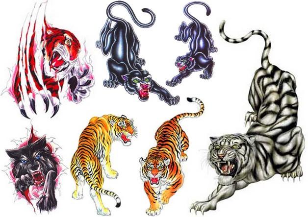 Asian Tiger Tattoo Design photo - 1