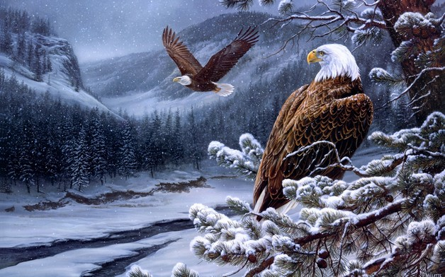 Awesome American Flying Eagle Tattoo photo - 1
