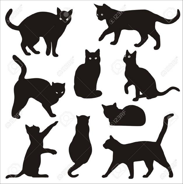 Black Cat Tattoo Builder