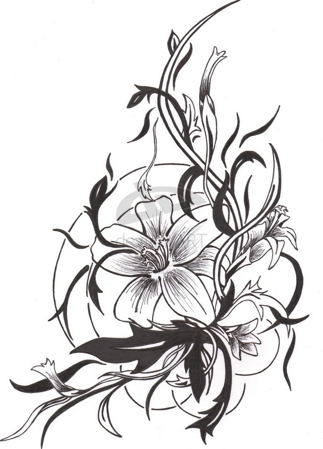 Black Ink Hummingbird Tattoo On Back photo - 1