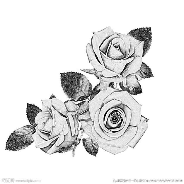 Hibiscus Flower n Leaves Tattoo On Lower Back photo - 1