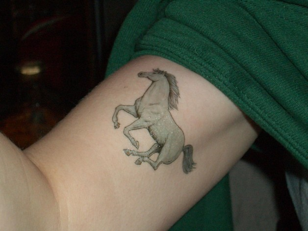 Horse Tattoo On Biceps photo - 1