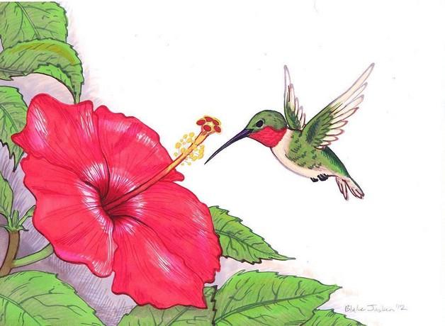 Hummingbird Tattoo Art Stamp photo - 1