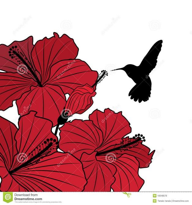 Hummingbird on Red Flower Tattoo Design photo - 1