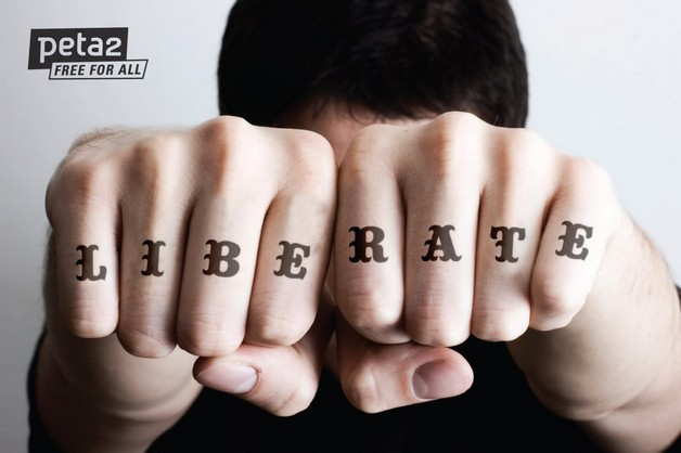 Knuckle Duster With Diamond Tattoo Over Ring Finger photo - 1