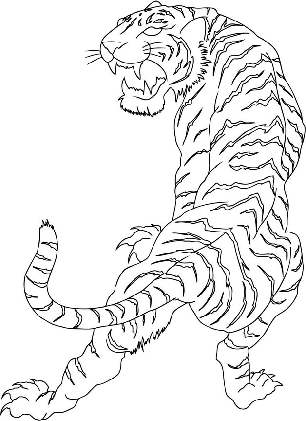 Latest Dragon And Tiger Tattoo Designs photo - 1