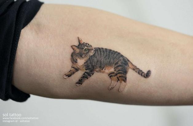 Nice Cat Tattoo On Arm photo - 1