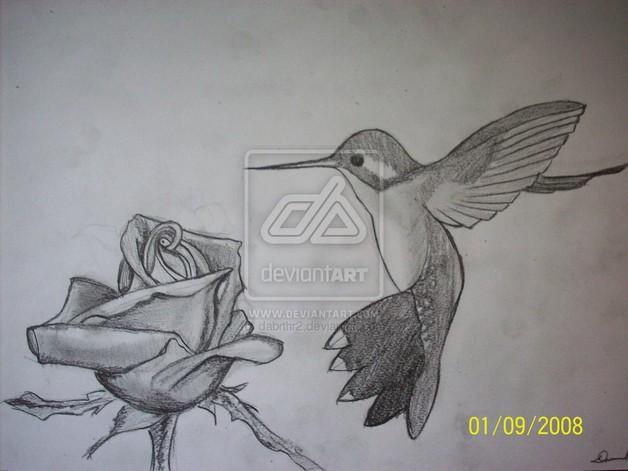 8057395c1 Nice Hummingbird n Rose Tattoo Design
