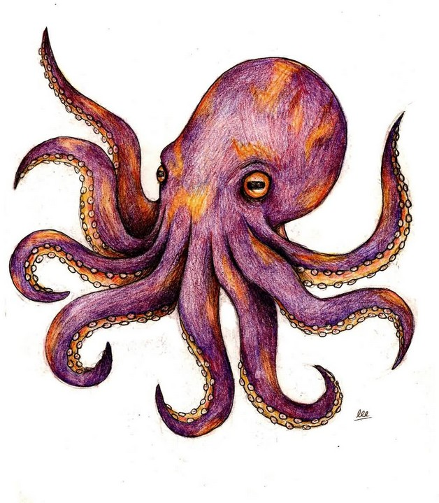 Purple Octopus With Anchor Tattoo Design photo - 1