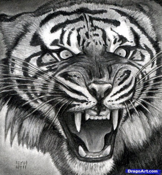 Realistic Angry Tiger Tattoo photo - 1