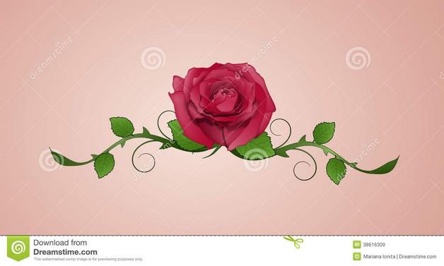 Rose Swirls And Red Ribbon Tattoos photo - 1