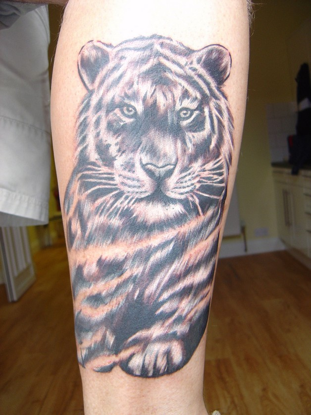 Tiger Family Tattoos For Men photo - 1