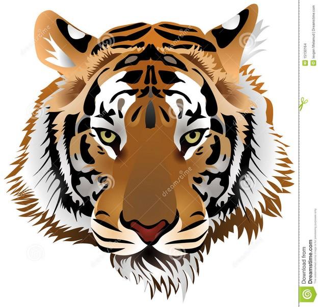Tribal And Tiger Head Tattoo Designs
