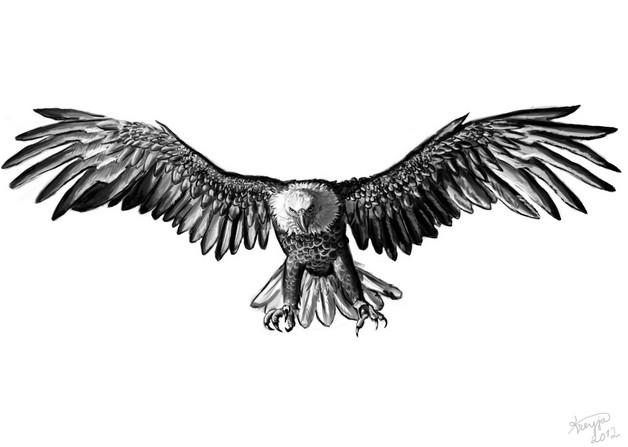 White Eagle with American Flag - Eagle Tattoo photo - 1