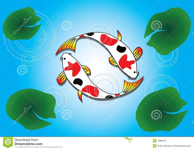 Ying Yang Fish Tattoo Design photo - 1