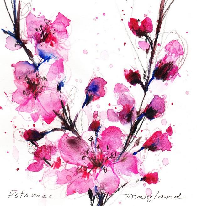 amazing cherry blossom flowers tattoo design photo - 1