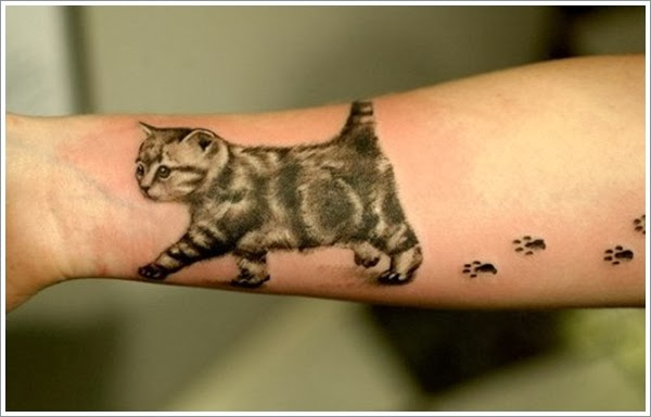 cat tattoo on muscle for men photo - 2