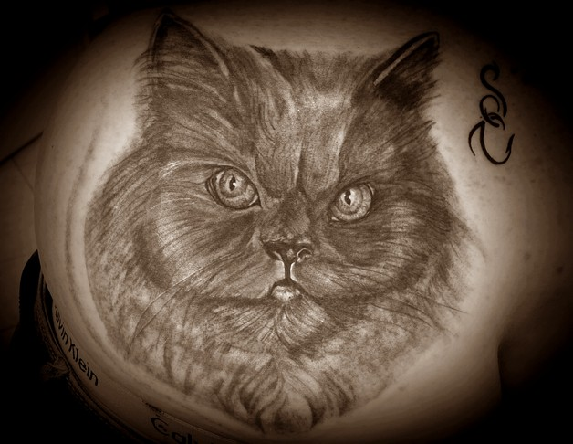 cat tattoo style photo - 1