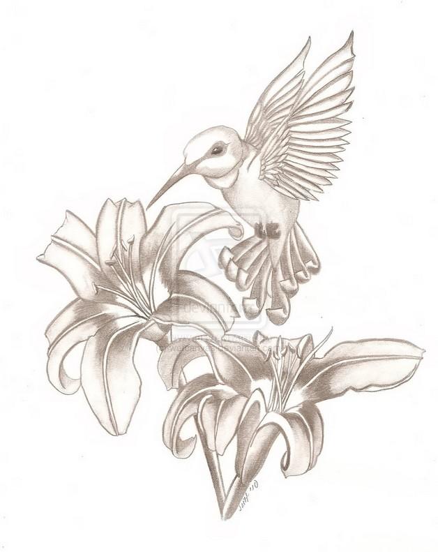 Flowers and hummingbird tattoo sketch flowers and hummingbird tattoo sketch photo 1 izmirmasajfo Choice Image