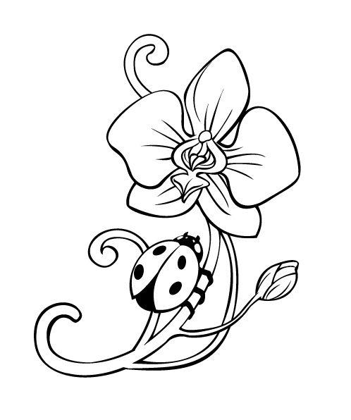 La Cattleya Orchid Tattoo Stencil