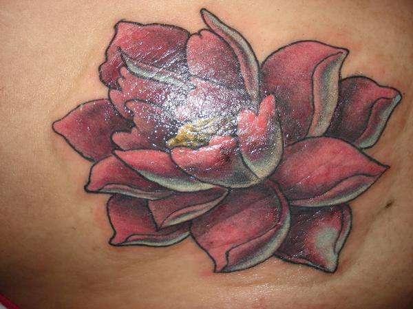 lotus and stars tattoo design photo - 2
