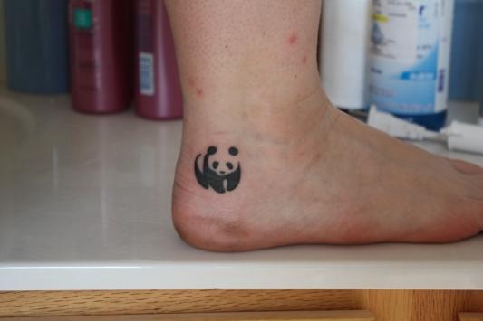 stars tattoo on heel photo - 1