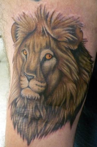 stunning cat tattoo designs photo - 2