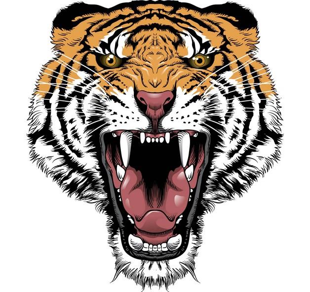 wild cat and yin yang tattoo design photo - 2